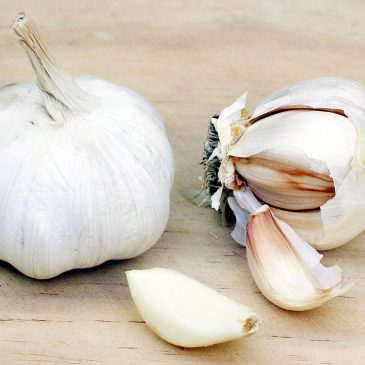 Steven Harris: Disciplined for intravenous garlic
