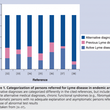 Lyme Misdiagnosis Illustrated