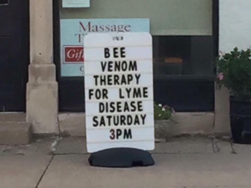 Bee venom therapy for Lyme disease Saturday 3pm